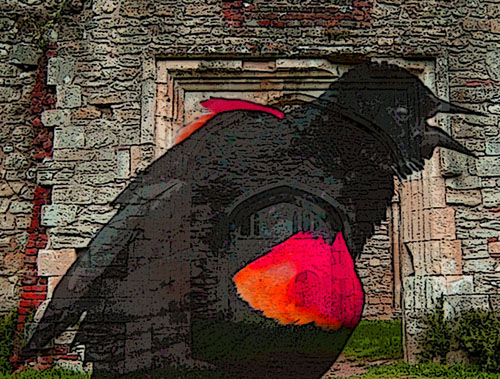 Red-winged blackbird (Andrea Westmoreland, Wikimedia Commons) and Tudor-era arches from the ruins of Netley Abbey (Gillian Moy, Wikimedia Commons).